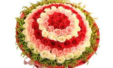 花急送99支玫瑰花束