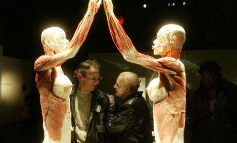 生命奥秘·人体世界科普展览