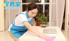 家务宝专业小时工日常保洁