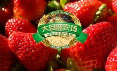 大自然有机皇家御用草莓一斤