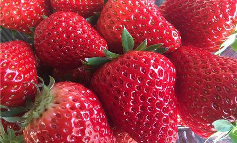 大自然农场草莓采摘园