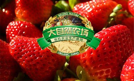 大自然农场草莓采摘园 - 大图