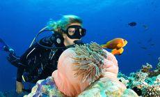 中潜潜水世界