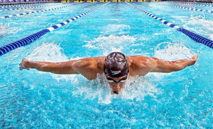 大白鲨游泳培训