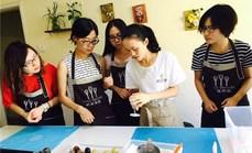 树苗双人DIY经典蛋糕