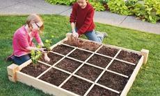 花仙子万花园农学活动一米园