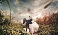 雅圣婚礼策划