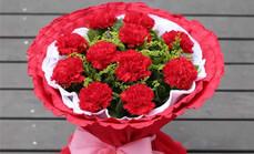 爱慕鲜花11朵康乃馨花束