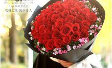 梓怡花坊33朵红色玫瑰花束