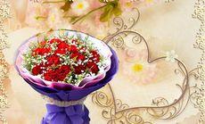 卉如鲜花11枝康乃馨花束