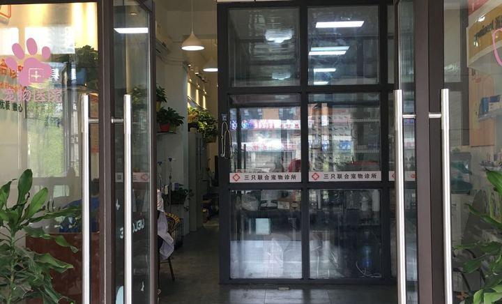 三只联合宠物诊所(龙泉店)