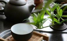 天香茶叶1人茶水套餐