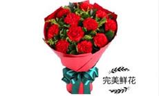 完美鲜花11支康乃馨