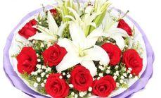 美心鲜花玫瑰百合