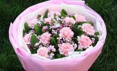 薇薇鲜花二十一朵康乃馨