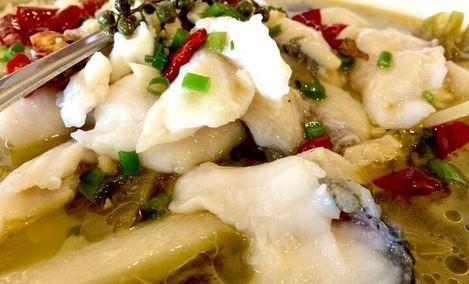 老纪酸菜鱼