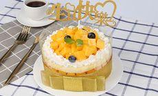 水果蛋糕6英寸