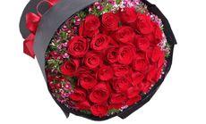 浪漫起点33枝红玫瑰