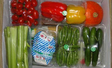 小韩蔬菜配送