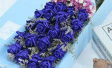 九州唯爱十一朵蓝色妖姬