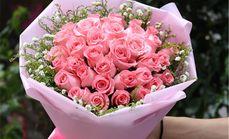 九州唯爱三十三朵粉玫瑰花束