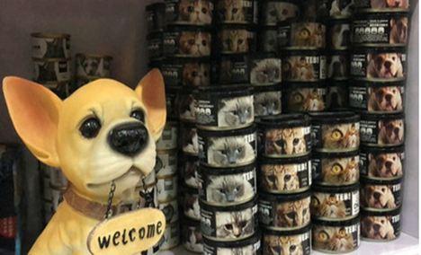 圣宠宠物丰科万达店