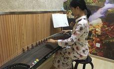 乐巢音乐古筝体验课