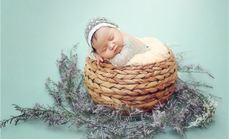 创影派新生宝宝照