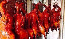 北京烤鸭一只