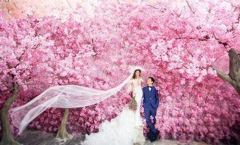 【花乡】水晶之恋婚纱摄影