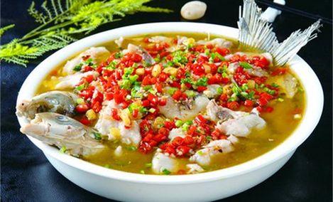 阿雷酸菜鱼