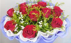 东郊花卉11朵红玫瑰