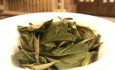天瑞堂煮茶养生6小时套餐