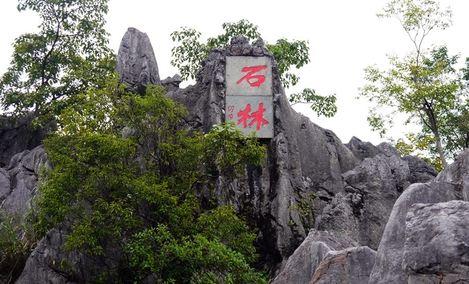 千岛湖石林景区