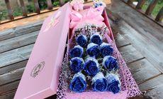 爱琴海11支蓝色妖姬礼盒