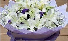花为媒11朵白百合