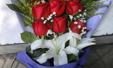 花艺九朵红玫瑰