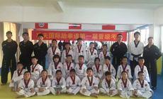 功夫国际跆拳道