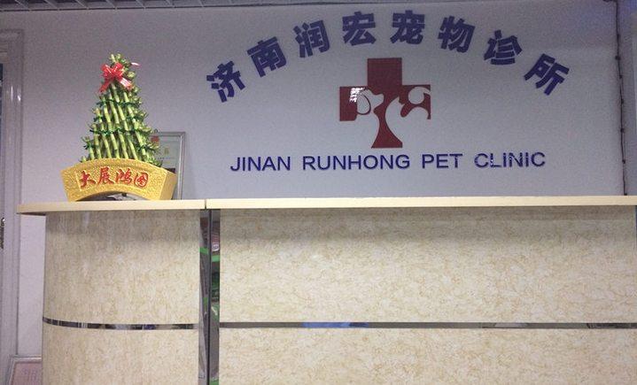 润宏宠物诊所