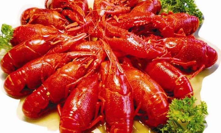 重茅小龙虾