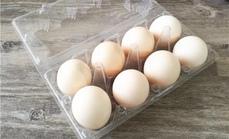 悠舍人家8枚柴鸡蛋土鸡蛋