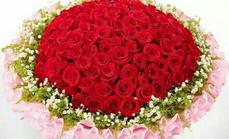 99支红玫瑰500元代金券
