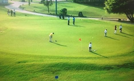 龙岗高尔夫培训班 - 大图
