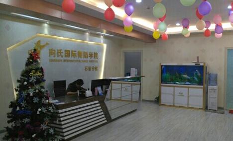 灵动舞蹈学院(石岩店)