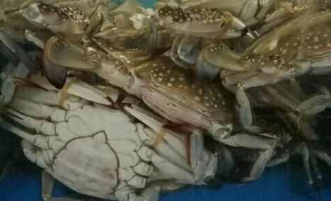 聚鑫源海鲜自助火锅城 - 大图