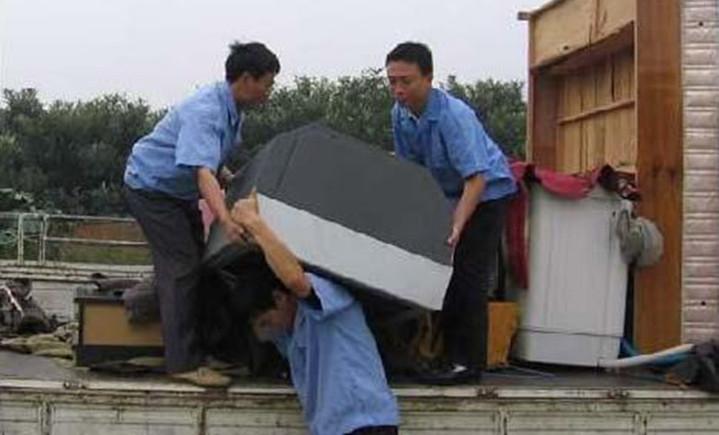 兔兔搬家保洁服务部