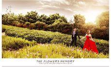 蒙娜丽莎韩式婚纱摄影升级