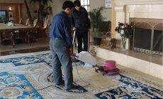 环保地毯清洗