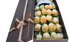 唯美盛典19枝香槟玫瑰礼盒
