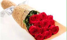 民族花店11朵粉色玫瑰